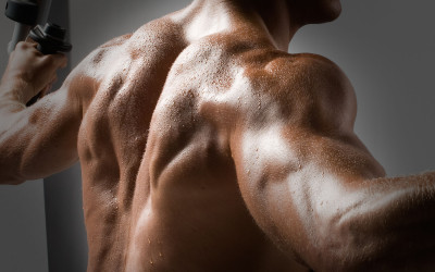 Shoulder trouble – Can our workout routine make that big of a difference?