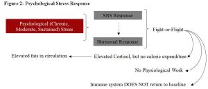 Psychological Stress Response Figure 2