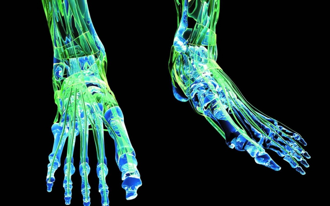 """Plantar Fasciitis – """"A Function First View Point"""""""