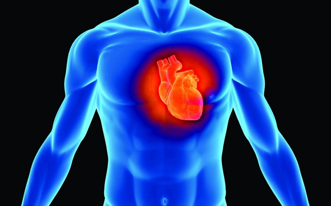 Image result for hearts smarts