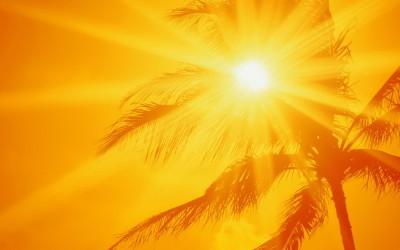 Vitamin D- The Sunshine Vitamin