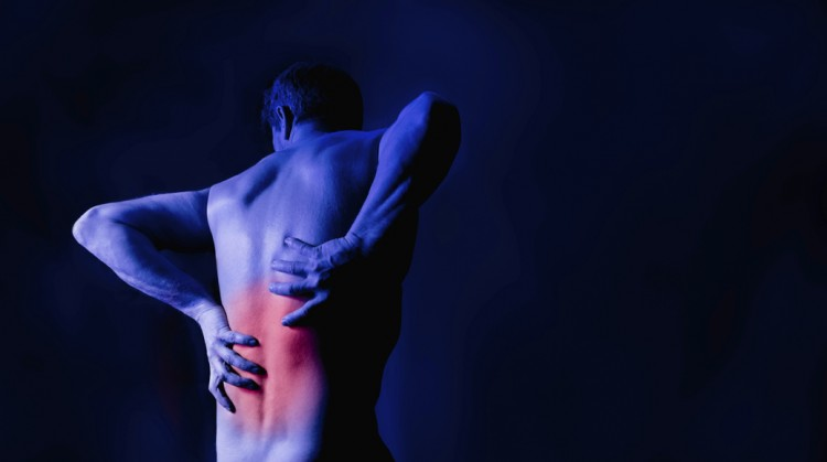 Help Clients Prevent Low Back Pain Through Effective Programming.