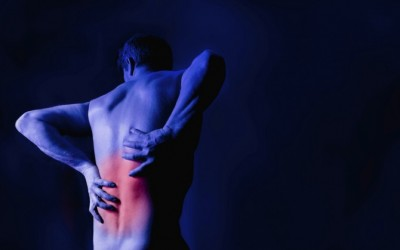 Help Clients Prevent Lower Back Pain Through Progamming.