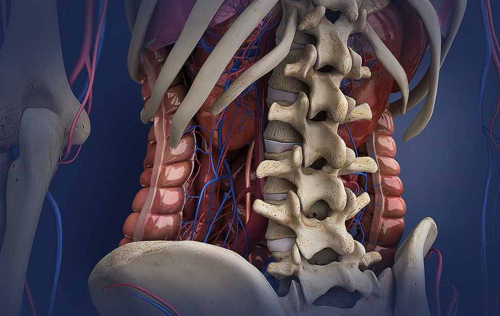 Preventing Low Back Pain: